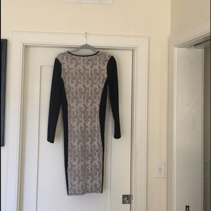 Oasis Textured Ponte Dress - Black/ivory